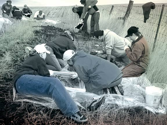 Bear Bones: A Murder Mystery :: Summer 2005 :: Washington