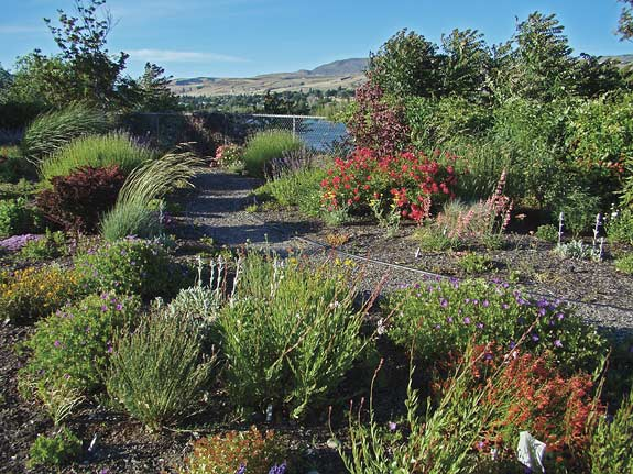 Master Gardeners Fall 2009 Washington State Magazine