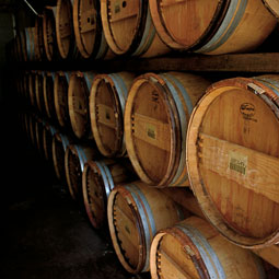 French oak wine barrels. <em>Robert Hubner</em>