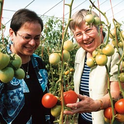 Kathleen Manenica and Sue Butkus coordinate Food Sense programs throughout the state. Among 