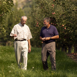 The basics of the integrated pest management program developed by Stan Hoyt (left) are used throughout the world. A number of WSU scientists, including Jay Brunner (right), promote IPM's virtues and effectiveness. Robert Hubner