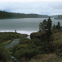 Scoured by the Missoula Floods 15,000 years ago, Rock Lake is long, nine miles deep, and like most of the scablands, lonely.