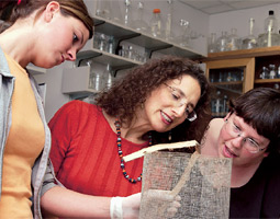 Teaching Academy member Carol Sheppard (center) examines a research project with Shannon Reive (left), an undergraduate in the Honors College, and Harmony Borchardt-Wier, an entomology graduate student.