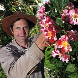 Steve Smith '76, head rose gardener at Manito Gardens in Spokane.