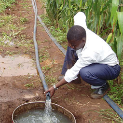 On a farm in Matchakaza, Malawi, Makileni Phiri fills a cistern with water from the Lingadzi River, as another (background) operates the treadle pump.