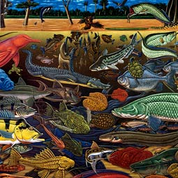 <em>Fishes of Amazonia</em> (2000), acrylic on canvas.