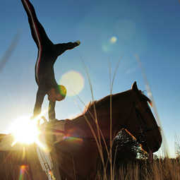 Todd Griffiths practices vaulting on his horse named Darby.
