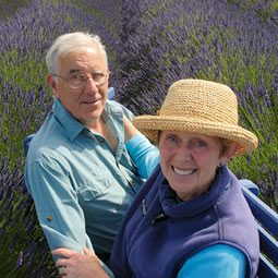 Even as they pursued their main careers, Cathy '68 and Leeon '68 Angel raised llamas for 16 years near Issaquah. They decided to forego livestock in their 'retirement' and now work double-time as the largest wholesale lavender growers around Sequim.