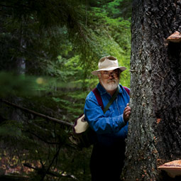 Jack Rogers started his career as a teacher and forest pathologist in the Pacific Northwest. Today he travels the world hunting for fungi that affect hardwoods, though he still visits the local woods each spring to hunt for morels.