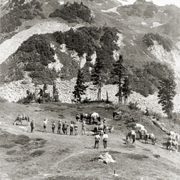 A photograph of Cascade Pass taken in 1916 shows that the area is relatively lush today, likely indicating warming. Photograph by L.D. Lindsley, 1916 Rinehart party, catalog #NOCA 19526, collection of North Cascades National Park Service Complex. Courtesy National Park Service.