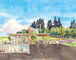 A proposed WSU Arboretum and Wildlife Conservation Center. Courtesy The Portico Group/Miller Hull