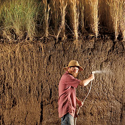 For Jerry Glover ('01 PhD Soil Science), agriculture's brightest future is below ground in the saved soil and powerful root systems of perennial grains he is helping develop. <em>Jim Richardson</em>