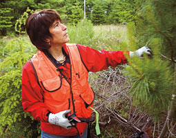 Linda Kast &rsquo;75 owns and manages a small forest on Whidbey Island. <em>Matt Hagen</em>