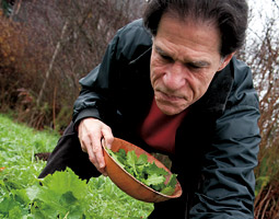 Farm to table pioneer Mark Musick in his kitchen garden. <em>Zach Mazur</em>