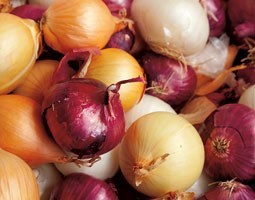 Onions for Sale <em>istockphoto</em>
