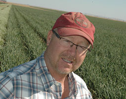 Brad Bailie &rsquo;95 has upped the ante considerably in the high-risk, high-payoff game of onion farming by growing them organically. <em>Staff photo</em>