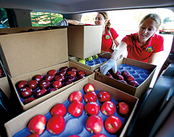 Danielle LaRiviere '12 and Lexi Schmidt '12 deliver apples to clients in Bellevue while Danielle's sister Megan '13 manages the Yakima and Tri-Cities end of Apple-a-Day. Photo Matt Hagen