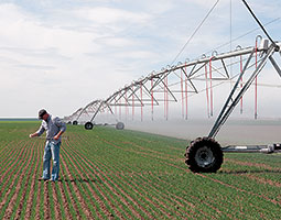 Whether Brad Bailie '95 irrigates by boom sprinklers or drip irrigation, his water has to come from deep wells since the East Low Canal of the Columbia Basin Project ends just a few miles from his farm. Photo Zach Mazur