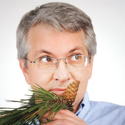 You smell pine, Tom Jobson smells monoterpenes. Photo Robert Hubner