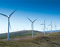 149 turbines turn on Whiskey Dick Mountain in Kittitas County. <em>Courtesy Puget Sound Energy</em>