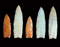 There is no question about the human origin of these Clovis points from the Richey-Roberts Clovis Cache near East Wenatchee. <em>Courtesy Mike Gramly/Washington State Historical Society</em>