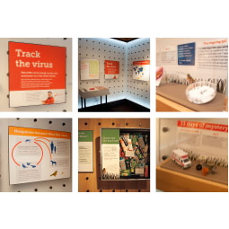 """Disease detectives"" exhibit, courtesy Pacific Science Center."