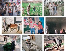 WSU's International development experts are working with villagers in the Afghan province of Laghman to help stabilize the communities after years of drought and conflict. Outfitted with disposable cameras, the villagers, farmers, and business owners collected these snapshots of their daily life.
