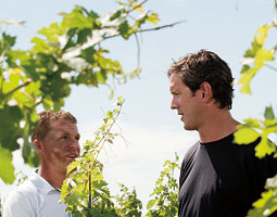 Drew Bledsoe and Chris Figgins '96 in vineyards. Robert Hubner