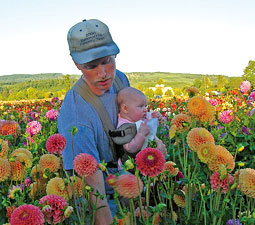 Dan Pearson and his daughter Alyssa pick flowers for the farmer's market. <em>Courtesy Mieke Pearson.</em>
