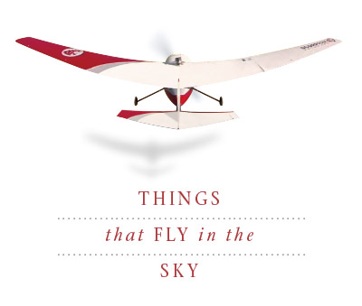 Things that Fly in the Sky