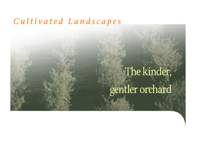 The kindler, gentler orchard