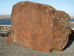 Petroglyphs saved from the Lake Sacajawea inundation. Photo by Neil Gilham.