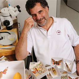Entomologist Rich Zack with some of the insects in WSU's collection. Photo Robert Hubner