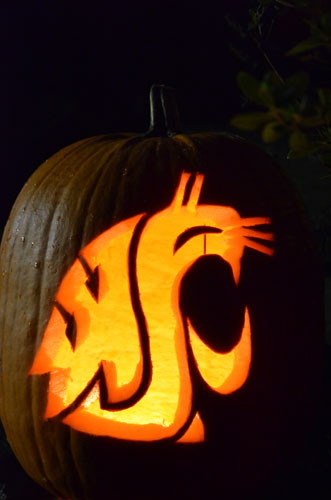 Coug-o-lantern carved by Janette Mallery (Rodgers) '03, '05